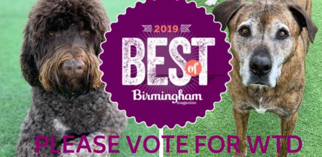 2019 Best of Birmingham